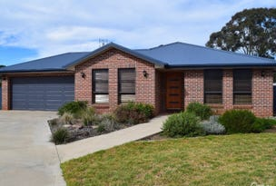 9 Mossgiel Close, Parkes, NSW 2870