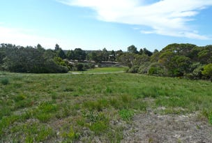 Lot 114 Tranquil Drive, Windabout, WA 6450
