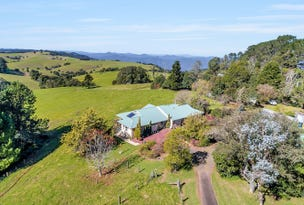 5265 WATERFALL WAY, Dorrigo, NSW 2453