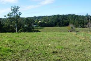 Lot 22, 150 Hydes Creek Road, Bellingen, NSW 2454
