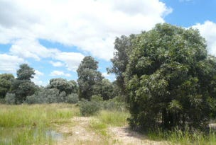 Lot 25 WESTERN ROAD, Tara, Qld 4421