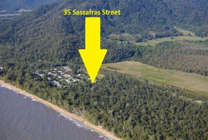 35 Sassafras Street, Bramston Beach, Qld 4871