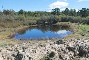 303 Catarrh Creek Rd, Torrington, NSW 2371