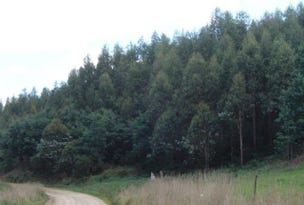 - Cuckoo Hill Road, Ringarooma, Tas 7263