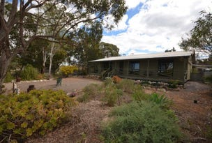 145 Altmann Road, Monarto South, SA 5254