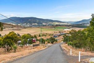 52 Landermere Drive, Honeywood, Tas 7017