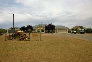 133 The Cattle Track Road, Crystal Brook, SA 5523