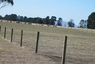 Lot 5,7,8,9 10, Walkenhorts Road, Tarrington, Vic 3301