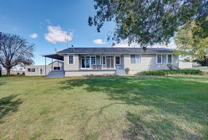 Collie Blue 841 Cassilis Road, Coolah, NSW 2843