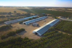 Thind Farm, 275 Carawatha Road, Mypolonga, SA 5254