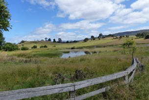 Lot 1 Miles Road, Mole Creek, Tas 7304