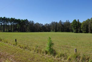 1332 Manning Point Road, Mitchells Island, NSW 2430