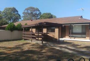 41 Macquarie Street, Ingleburn, NSW 2565