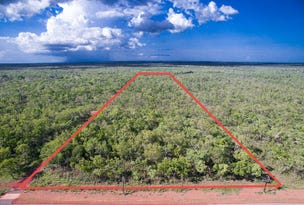 Lot 2754, 55 Ridgeview Road, Fly Creek, NT 0822