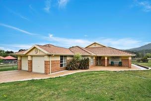 2 Kingston Town Drive, Kembla Grange, NSW 2526