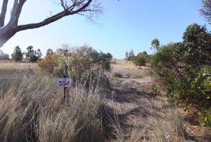 Lot 554 Steeredale Road, Hopetoun, WA 6348