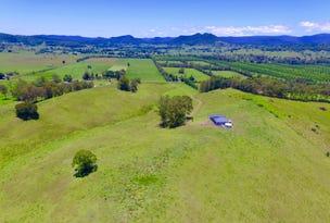 691 Wiangaree Back Road, Wiangaree, NSW 2474