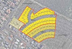 Lot 210 Riverina Grove Estate, Clifton Boulevard, Griffith, NSW 2680