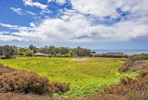 20 Mission Hill Road, Penguin, Tas 7316