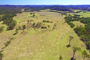 1668 Plains Station Rd, Tabulam, NSW 2469