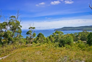 L1/225 White Beach Road, White Beach, Tas 7184