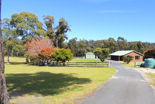 19 Riverview Rd, Scamander, Tas 7215