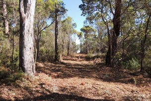 Lot 56 Randall Road, Denmark, WA 6333