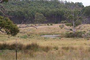 388 Quamby Brook Road, Quamby Brook, Tas 7304