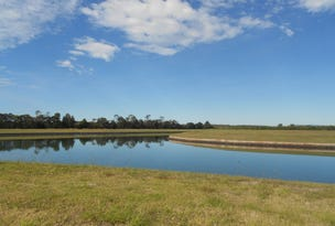 Lot 251, Poinciana Place Calypso Bay, Jacobs Well, Qld 4208