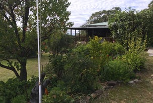 364 Home Hills Rd, Mount Marsden, NSW 2849