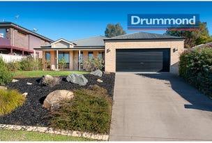 935 Malaguena Avenue, Glenroy, NSW 2640