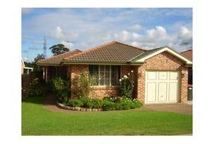 58 Corvus Road, Hinchinbrook, NSW 2168