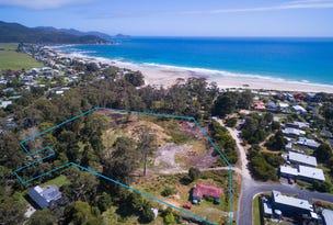 34 Elfrida Avenue, Sisters Beach, Tas 7321