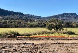 Lot 175 at Sanctuary Ponds, Wongawilli, NSW 2530