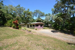 1380 Pine Creek Road, East Trinity, Qld 4871