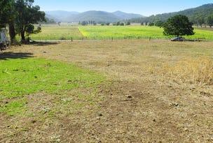 Lot 1 Baerami Creek Road, Baerami, NSW 2333