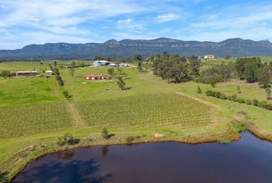 96B Mistletoe Road, Pokolbin, NSW 2320