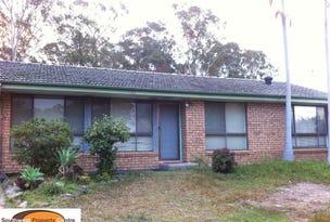 3 Crinum Place, Macquarie Fields, NSW 2564