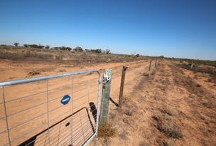 Lot 57 Wentworth  Road, Renmark, SA 5341