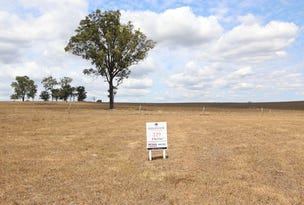 Lot 229 Hillview, Louth Park, NSW 2320