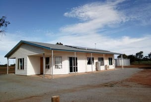114 Burrawing Creek Road, Lipson, SA 5607