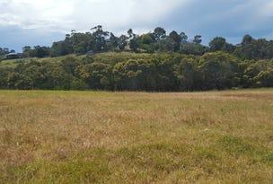 133 Gold Ring Road, Lake Bunga, Vic 3909