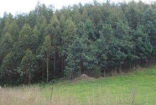. Cuckoo Hill Road, Ringarooma, Tas 7263