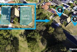 141 Nannatee Way, Wanneroo, WA 6065