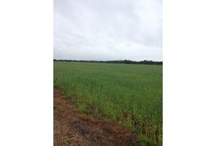 Farm 1045 Pine Drive, Coleambally, NSW 2707