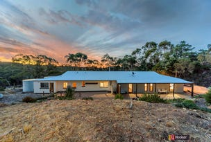 136 Bassnet Road (Humbug Scrub), One Tree Hill, SA 5114