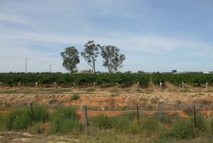 "Lot 5,6,9 ""Minninya Vineyards""Perricoota Road, Moama, NSW 2731"