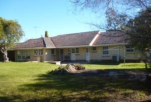 43 Jenkins Terrace, Naracoorte, SA 5271
