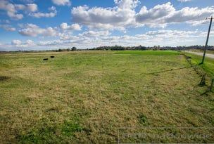 48 Flat Road, Bolwarra, NSW 2320