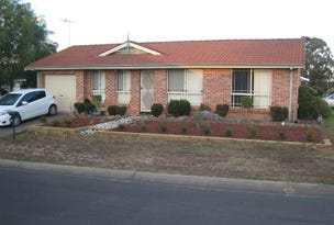 12 Ann Pl, Bligh Park, NSW 2756
